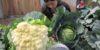 cauliflower-in-the-balance