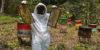 nueva-segovia-beekeeping-2