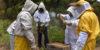 nueva-segovia-beekeeping-4
