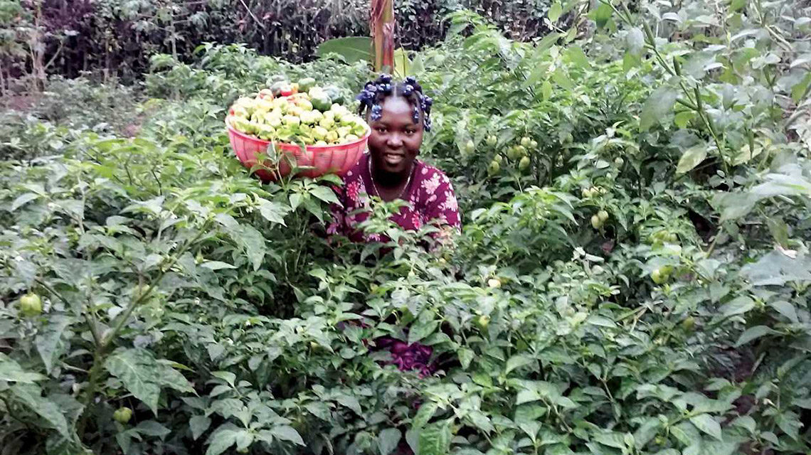 Haiti Rural Women's Farming Program